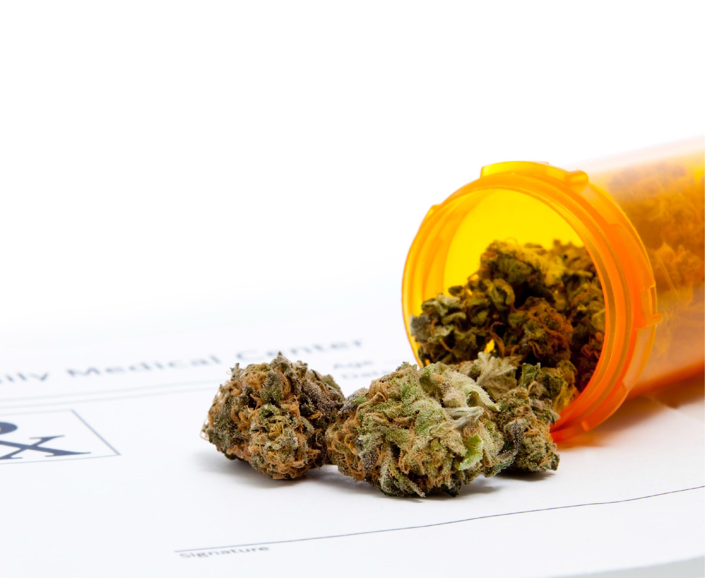 Cannabis & Cancer